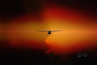 Jabiru Sunset Art Print