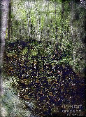 Jack Kell's Woods Art Print by RC DeWinter