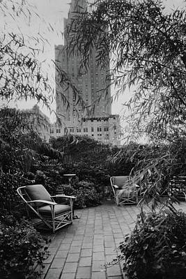 Weeping Willow Photograph - Jack Little's Garden In New York City by A E Boutrelle