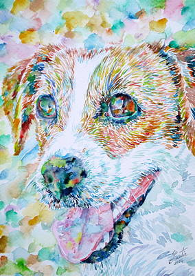Painting - Jack Russell Terrier - Watercolor Portrait.1 by Fabrizio Cassetta