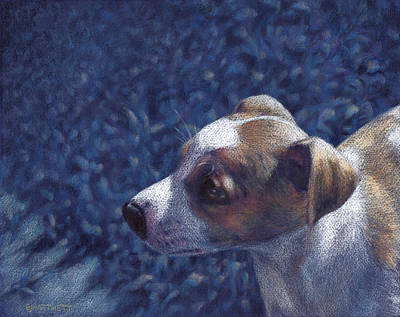 Print featuring the drawing Jack Russell Terrier On Blue by Ben Hartnett