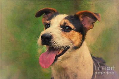 Small Digital Art - Jack Russell Terrier Portrait by Angela Doelling AD DESIGN Photo and PhotoArt