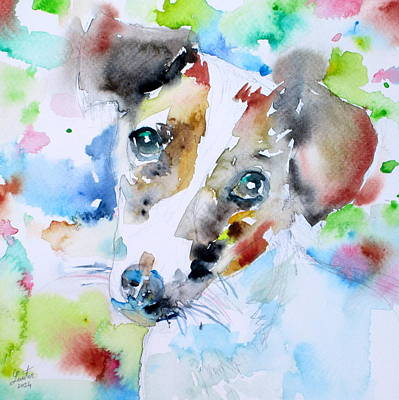 Painting - Jack Russell Terrier - Watercolor Portrait.3 by Fabrizio Cassetta