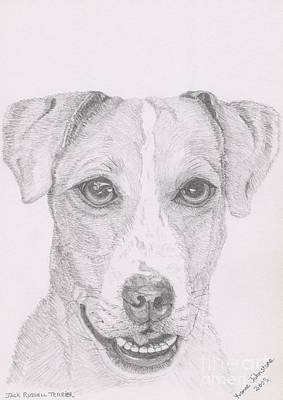 Drawing - Jack Russell Terrier by Yvonne Johnstone