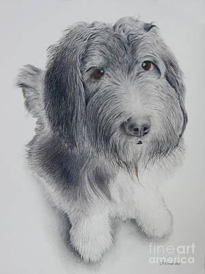 Jack - Sheepdog Briard Border Collie Mix Art Print by John Small
