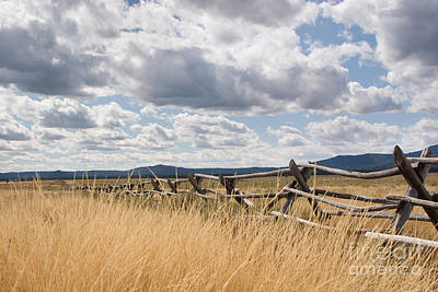 Photograph - Jackleg Fence In The Desert by Cindy Singleton