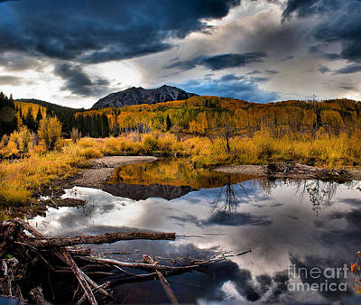 Art Print featuring the photograph Jack's Pond by Steven Reed