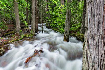 Flooding Photograph - Jackson Creek In Glacier National Park by Chuck Haney