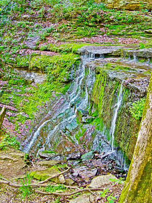 Jackson Falls At Mile 405 Of Natchez Trace Parkway-tennessee Art Print by Ruth Hager