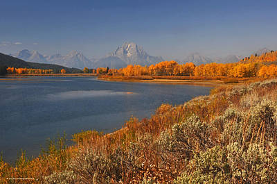 Photograph - Jackson Lake Orange Shoreline In Autumn Grand Tetons National Park by Schwartz Nature Images