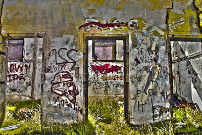 Photograph - Jacumba Graffiti  by Gigi Ebert