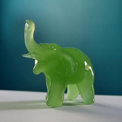 Photograph - Jade Elephant by Tom Druin