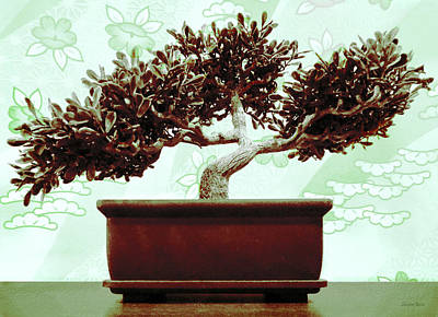 Photograph - Jade Green Bonsai by Shawna Rowe