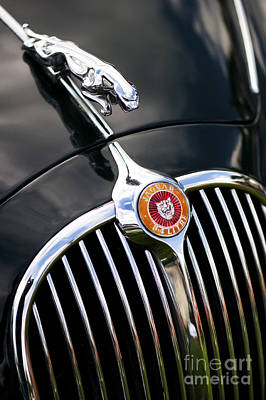 Jaguar 3.4 Litre Classic Car Art Print by Tim Gainey