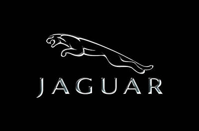 Photograph - Jaguar Logo by Carlos Diaz