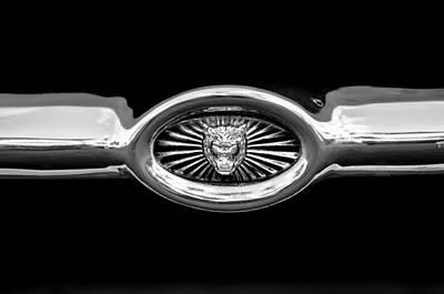 Jaguar E-type Grille Emblem -0562bw Print by Jill Reger