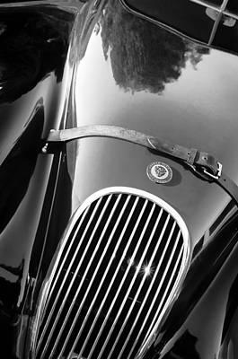 Photograph - Jaguar Hood Emblem - Grille by Jill Reger