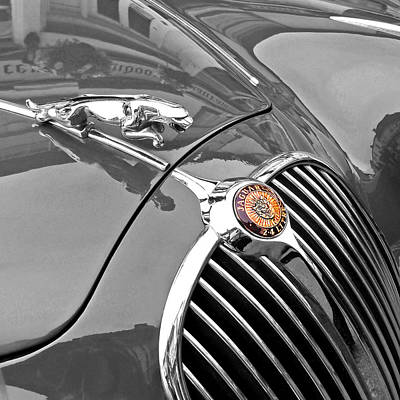 Photograph - Jaguar Hood Ornament 1960 by Gill Billington