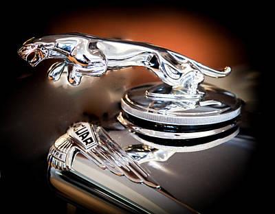F-type Photograph - Jaguar by Karen Wiles