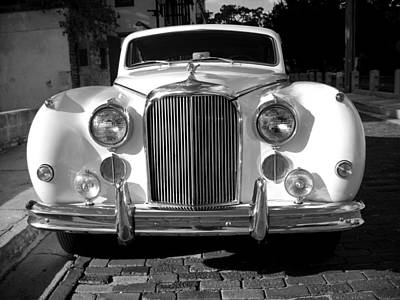 Photograph - Jaguar Series 03 by Carlos Diaz