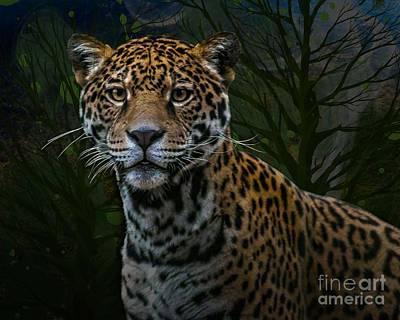 Photograph - Jaguar Two by Ken Frischkorn