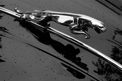 Luxury Cars Photograph - Jaguar Xk 150 Hood Ornament by Jim Hughes