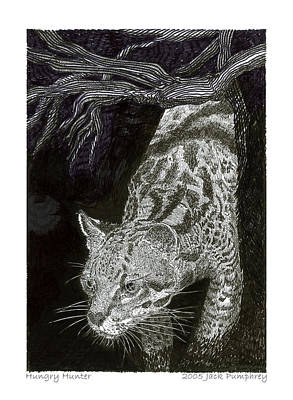 New Mexico Drawing - Jaguarundi Hungry Hunter by Jack Pumphrey