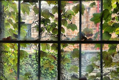 Photograph - Jail Cell Windows by Adam Jewell