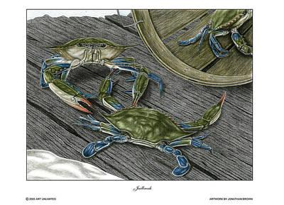 Blue Crab Drawing - Jailbreak by Jonathan W Brown