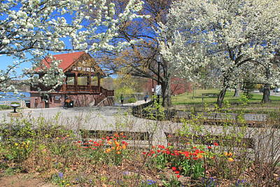 Jamaica Pond Boston In Spring Art Print
