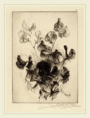 James David Smillie, Sweet Peas, American Art Print by Litz Collection