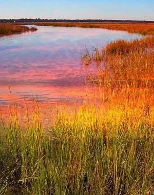 Photograph - James Island Sc 2 by Bob Pardue