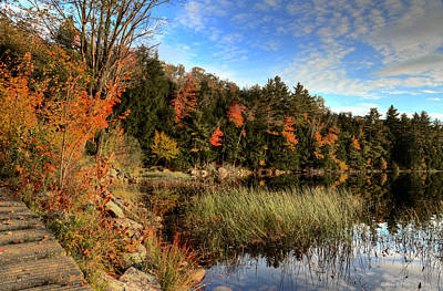 Photograph - Jamies Pond 2 by Andrea Platt