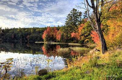 Photograph - Jamie's Pond by Andrea Platt
