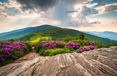 Mountain Royalty-Free and Rights-Managed Images - North Carolina Blue Ridge Mountains Landscape Jane Bald Appalachian Trail by Dave Allen