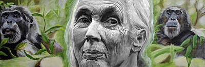 Chimpanzee Painting - Jane Goodall by Simon Kregar