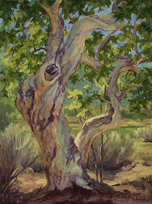 Tree Painting - Spring Sycamore by Jane Thorpe