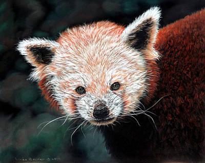 Drawing - Jane by Linda Becker