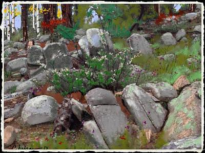 Prescott Mixed Media - Janies' Rock Garden 1 by Craig Nelson