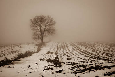 Photograph - January Fog by Bill Pevlor