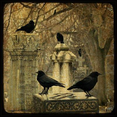Birds In Graveyard Photograph - January Darkness by Gothicrow Images