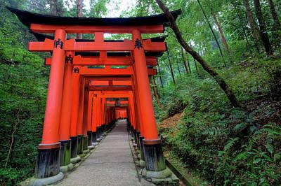 Japan, Kyoto Torii Gates Art Print