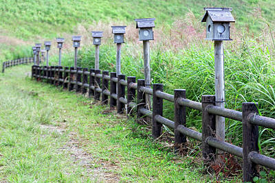 Nara Photograph - Japan, Nara Prefecture, Soni Plateau by Jaynes Gallery