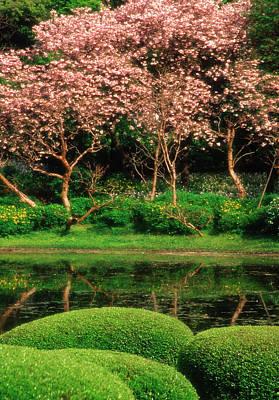 Japan, Tokyo Reflecting Pond, Imperial Art Print by Jaynes Gallery