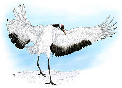 Photograph - Japanese Crane by Roger Hall