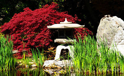 Photograph - Japanese Garden by Angela DeFrias