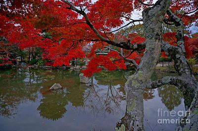 Apan Photograph - Japanese Garden At Twilight-2 by Sergey Reznichenko