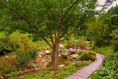 Indiana Photograph - Japanese Garden Bridge by Amy Lucid