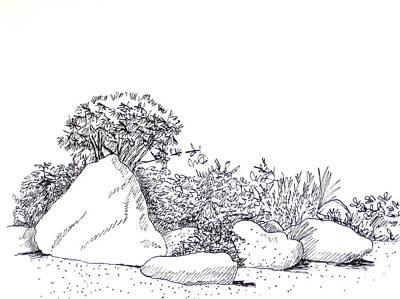 Zen Garden Drawing   Japanese Garden By Deborah Dendler