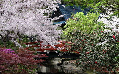 Photograph - Japanese Garden by Jeff Lowe